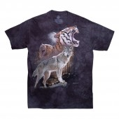ALTAMONT T-Shirt NEEN x THE MOUNTAIN S/S black wash