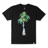 ALTAMONT T-Shirt GREEN DRAGON black