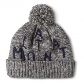 ALTAMONT Beanie SOURCE POM, military